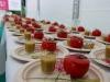 festival-cuisine-sante_010