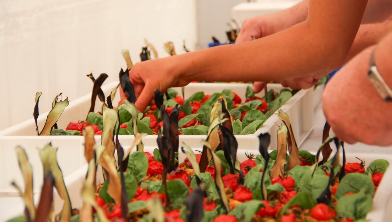 festival-cuisine-dietetique-52
