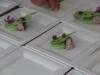 festival-cuisine-sante_045